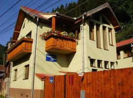 Hotel Photo: Pension Gentiana