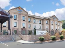 Hotel Photo: Comfort Inn Harriman