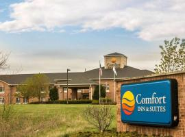 Hotel Photo: Comfort Inn & Suites Fenton