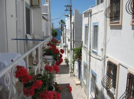 Sahil Pension Bodrum City Turkey