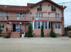 Hotel Photo: Pension Rozeclas