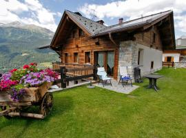 Hotel Photo: Chalet Teo e Marianna