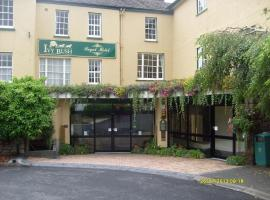 Hotel Photo: Ivy Bush Royal Hotel by Compass Hospitality