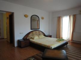 Confort Accommodation Apartments - Unirii Square Bucharest Romania
