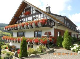 Pension Sonnenblick Winterberg Германия