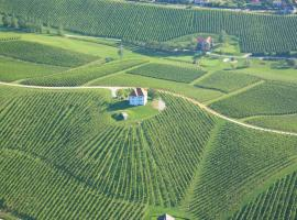 Hotel Photo: Wine Grower's Mansion Zlati Gric
