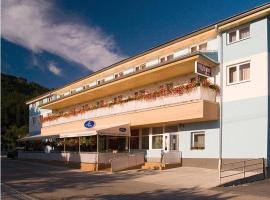 Hotel Photo: Penzion Anton