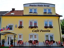 Hotel Photo: Penzion Fontis Terrae
