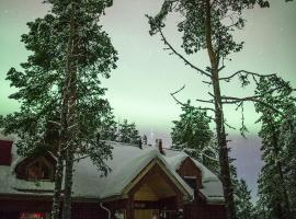 Torassieppi Cottages Särkijärvi Финляндия