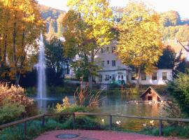 Parkhotel Am Schwanenteich Bad Sooden-Allendorf Germany