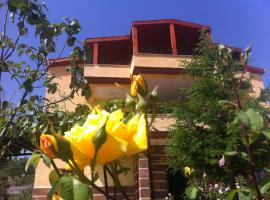 Hotel Photo: Villa Kayseri