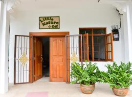 Little Nature Penang Homestay Georgetown Malaisie
