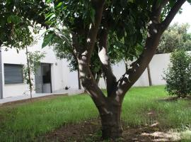 Hotel Photo: Residencia Mayol - Adults Only