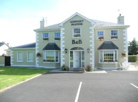 Hotel near Shannon airport : Airport Manor B&B