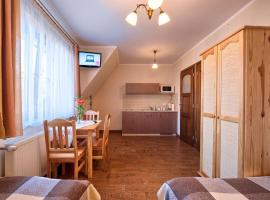 VISITzakopane City Apartments Zakopane 波兰