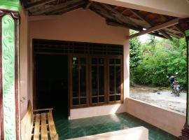 Orlinds Loji Guesthouse Wonosari Indonesia