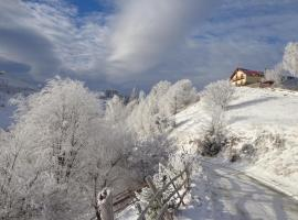 Pension Mosorel - Magura Bran Romania