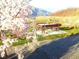 Hotel photo: Hotel Pension Weingut