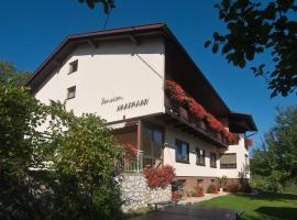 Hotel Photo: Pension Hartmann