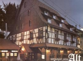 Hotel Photo: Hotel Alt Ebingen