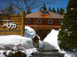 Hotel Photo: Pension Pechika