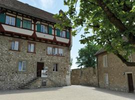 Hotel Photo: Dachsen am Rheinfall Youth Hostel