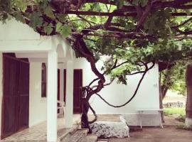 Hotel Photo: Billur Pension