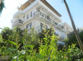 A picture of the hotel: Akkin Pansiyon