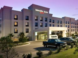 A picture of the hotel: Springhill Suites by Marriott Jacksonville Airport