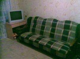 Central appartment1 Arkhangelsk Russia