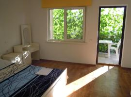 Hotel Photo: Guest House Fiolent-Life