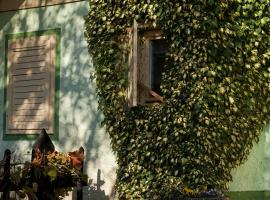 Hotel photo: Vineyard Cottage Gole
