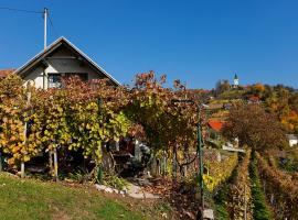 Hotel near Novo Mesto: Vineyard Cottage Vercek
