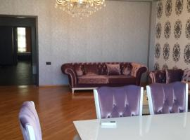 Hotel photo: Aladdin Guliyev Street Apartment