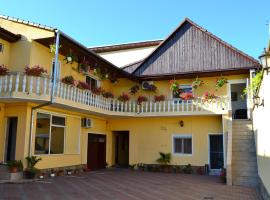 A picture of the hotel: Pensiunea Alexander