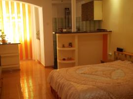 Hotel photo: Garsoniera Rustic