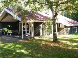 Hotel Photo: Holiday home Lindeparken B- 2710