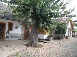 Hotel photo: Country House Pod dudom Aljmaš