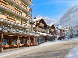 Hotel Photo: Hotel Central Wolter - Grindelwald