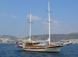 Boat Onelli Bodrum City Turkey