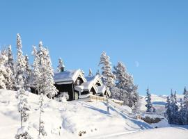 Hotel photo: Gaustatoppen Booking