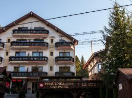 Hotel Photo: Pensiunea Carpatic