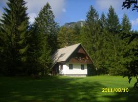 Rooms and Apartments Lake Bohinj Bohinj 斯洛文尼亚