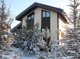 Hotel near Domododevo airport : Domodedovo Holiday Home
