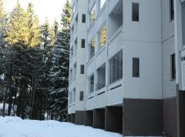 Hotel photo: Joutjärvi Apartment