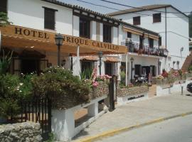 A picture of the hotel: Hotel Enrique Calvillo