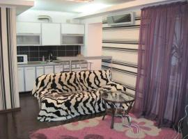 Hotel photo: Two bedroom apartment on Gagarina street
