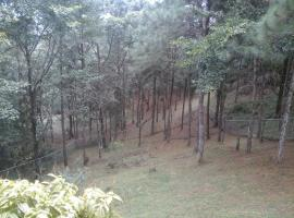 Hotel Photo: Cerro Azul Mountain Home