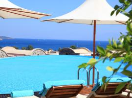 A picture of the hotel: Temenos Luxury Suites Hotel & Spa