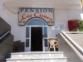 Hotel photo: Pension Los Cisnes